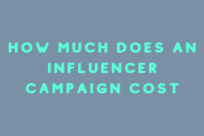How much does an influencer campaign cost