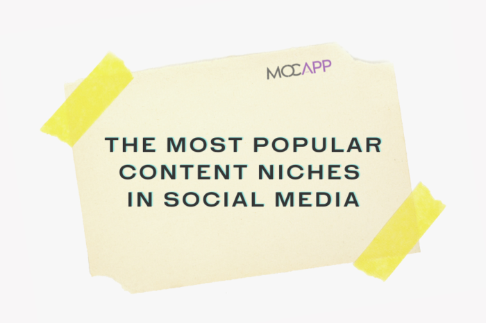 The most popular content niches in Social Media
