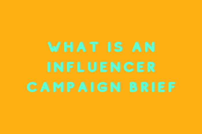 What is an Influencer Campaign Brief